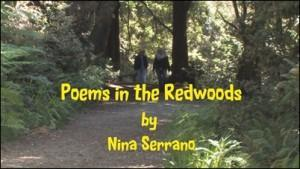 Poems in the Redwoods