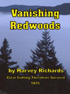 Vanishing Redwoods 1