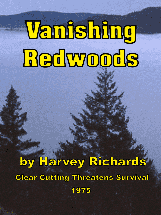 Vanishing Redwoods