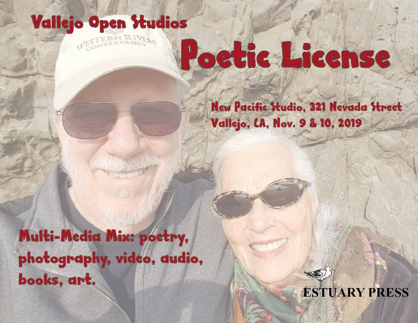 poetic license poster