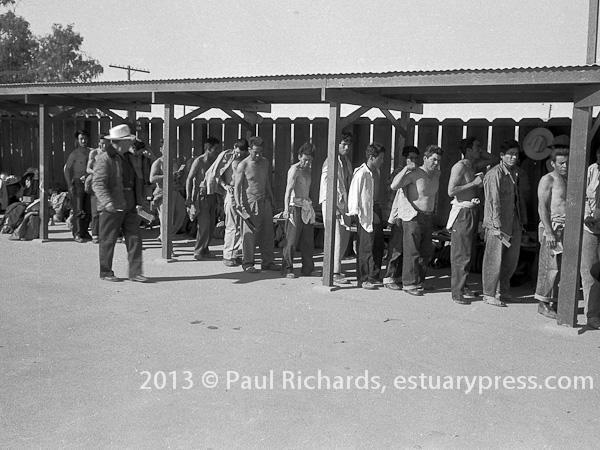 Bracero workers medical check up line, El Centro, California, 1958