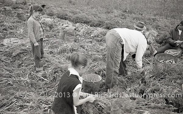 Children in the Fields, 1958, 1962.