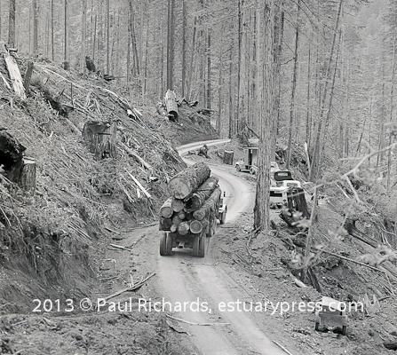 The Stump Makers Hauling Logs
