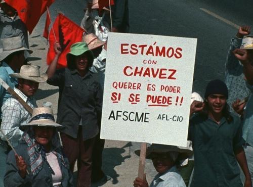 Pickiet-line-4a-si-se-puede