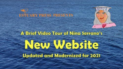 Nina Website tour graphic