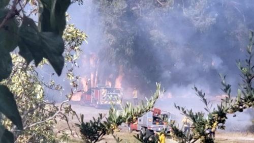 Hanns Park Fire