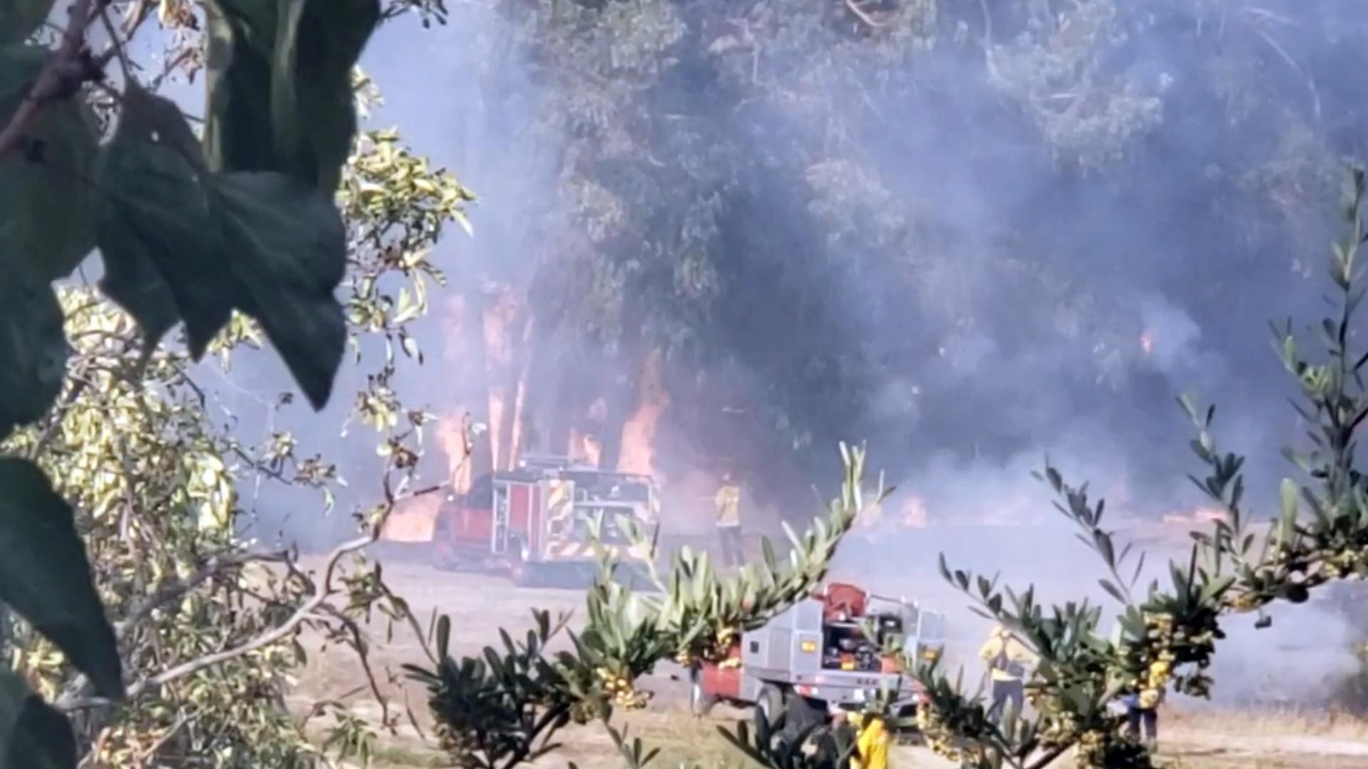 Flames-photo